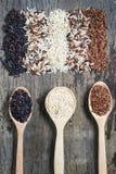 Υγιές οργανικό ρύζι τροφίμων Στοκ φωτογραφίες με δικαίωμα ελεύθερης χρήσης