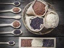 Υγιές οργανικό ρύζι Στοκ φωτογραφίες με δικαίωμα ελεύθερης χρήσης