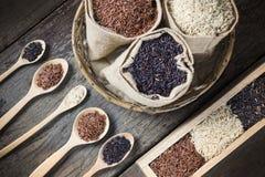 Υγιές οργανικό ρύζι Στοκ Φωτογραφίες