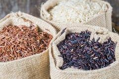 Υγιές οργανικό ρύζι Στοκ φωτογραφία με δικαίωμα ελεύθερης χρήσης
