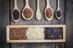 Υγιές οργανικό ρύζι Στοκ Εικόνες