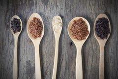 Υγιές οργανικό ρύζι Στοκ εικόνες με δικαίωμα ελεύθερης χρήσης