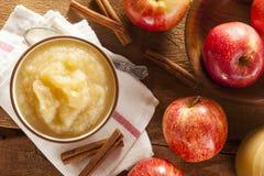 Υγιές οργανικό Applesauce με την κανέλα Στοκ Εικόνα