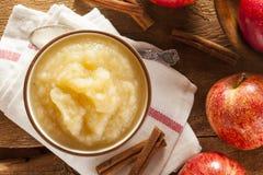 Υγιές οργανικό Applesauce με την κανέλα Στοκ φωτογραφία με δικαίωμα ελεύθερης χρήσης