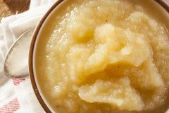 Υγιές οργανικό Applesauce με την κανέλα Στοκ φωτογραφίες με δικαίωμα ελεύθερης χρήσης
