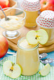 Υγιές οργανικό applesauce Στοκ εικόνα με δικαίωμα ελεύθερης χρήσης