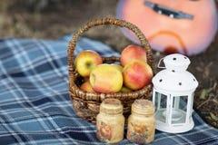 Υγιές πικ-νίκ για θερινές διακοπές με τα φρέσκα μήλα στο β Στοκ Φωτογραφίες