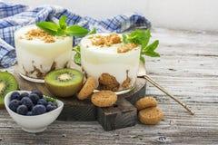 Υγιές πρόγευμα βιταμινών: Ελληνικό γιαούρτι με τα ιταλικά μπισκότα αμυγδάλων με τα φρέσκα μούρα και τα φρούτα, το ακτινίδιο και τ Στοκ Φωτογραφίες