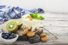 Υγιές πρόγευμα βιταμινών: Ελληνικό γιαούρτι με τα ιταλικά μπισκότα αμυγδάλων με τα φρέσκα μούρα και τα φρούτα, το ακτινίδιο και τ Στοκ εικόνα με δικαίωμα ελεύθερης χρήσης