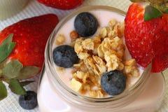 Υγιές πρόγευμα - γιαούρτι με τα μούρα και το muesli Στοκ Εικόνες