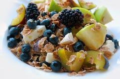 Υγιές πρόγευμα, θερινά φρούτα Στοκ φωτογραφία με δικαίωμα ελεύθερης χρήσης