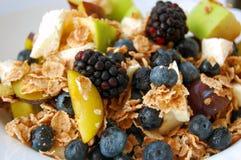 Υγιές πρόγευμα, θερινά φρούτα Στοκ Εικόνα