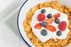 Υγιές πρόγευμα με τα δημητριακά και τα μούρα σε ένα ε Στοκ Φωτογραφίες