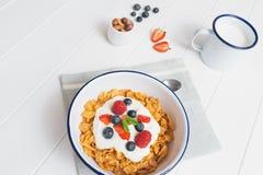Υγιές πρόγευμα με τα δημητριακά και τα μούρα σε ένα κύπελλο σμάλτων Στοκ Εικόνες