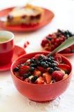Υγιές πρόγευμα: τυρί εξοχικών σπιτιών με την ξινά κρέμα, τη φράουλα, το σμέουρο και το βακκίνιο, espresso, cheesecake κερασιών Στοκ φωτογραφία με δικαίωμα ελεύθερης χρήσης