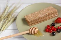 Υγιές πρόχειρο φαγητό από τις Wholegrain κροτίδες παξιμαδιών σίκαλης και τα φρέσκα μούρα στο ελαφρύ υπόβαθρο Στοκ εικόνες με δικαίωμα ελεύθερης χρήσης
