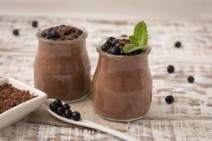 Υγιές πρόχειρο φαγητό προγευμάτων ή πρωινού με τη σοκολάτα σπόρων chia pud Στοκ εικόνα με δικαίωμα ελεύθερης χρήσης