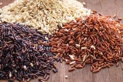 Υγιές ρύζι στοκ φωτογραφίες με δικαίωμα ελεύθερης χρήσης