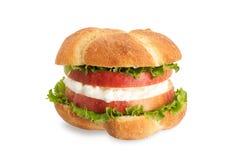 υγιές σάντουιτς μήλων στοκ εικόνες