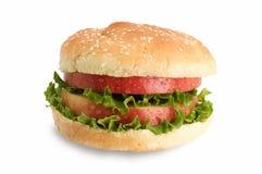 υγιές σάντουιτς στοκ φωτογραφία