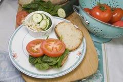 υγιές σάντουιτς στοκ εικόνες