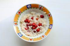 Υγιές σπιτικό Oatmeal με τα μούρα Στοκ εικόνες με δικαίωμα ελεύθερης χρήσης