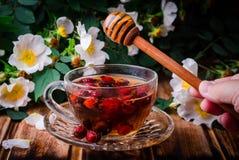 Υγιές τσάι με ένα dogrose και μέλι σε έναν ξύλινο πίνακα Εκλεκτική εστίαση Στοκ εικόνες με δικαίωμα ελεύθερης χρήσης