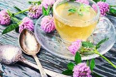 Υγιές τσάι με το τριφύλλι Στοκ Φωτογραφία