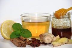 Υγιές τσάι πιπεροριζών με την κανέλα, το λεμόνι και το μέλι μεντών Στοκ φωτογραφίες με δικαίωμα ελεύθερης χρήσης