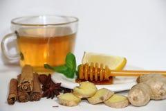 Υγιές τσάι πιπεροριζών με την κανέλα, το λεμόνι και το μέλι μεντών Στοκ Εικόνα