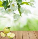 Υγιές υπόβαθρο τροφίμων με τα πράσινα φρούτα της Apple Στοκ φωτογραφίες με δικαίωμα ελεύθερης χρήσης