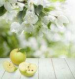 Υγιές υπόβαθρο τροφίμων με τα φρούτα της Apple Στοκ Εικόνες