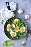 Υγιές χορτοφάγο πρόγευμα: τηγανισμένα αυγά και φασόλι σπαραγγιού σε ένα skillet r στοκ εικόνες