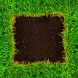 υγιές χώμα χλόης Στοκ Φωτογραφίες