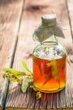 Υγιές tincture στα μπουκάλια ως σπιτική θεραπεία Στοκ φωτογραφία με δικαίωμα ελεύθερης χρήσης