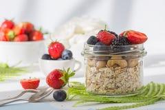 Υγιής έννοια δημητριακών τροφίμων προγευμάτων έξοχη με τους νωπούς καρπούς, το granola, το γιαούρτι, τα καρύδια και το σιτάρι γύρ στοκ φωτογραφίες με δικαίωμα ελεύθερης χρήσης