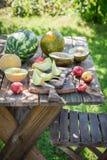 Υγιής διάφορος των νωπών καρπών στο θερινό κήπο Στοκ εικόνα με δικαίωμα ελεύθερης χρήσης