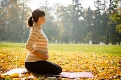 Υγιής εγκυμοσύνη - άσκηση υπαίθρια Στοκ εικόνα με δικαίωμα ελεύθερης χρήσης