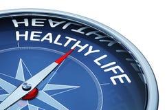 υγιής ζωή στοκ εικόνες
