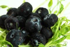 Υγιής και ευεργετική απεικόνιση φρούτων στοκ φωτογραφία
