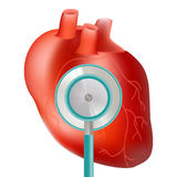 Υγιής καρδιά με τη χρήση στηθοσκοπίων για το ιατρικό θέμα καρδιών που απομονώνεται σε ένα άσπρο υπόβαθρο Ρεαλιστική διανυσματική  Στοκ Εικόνες