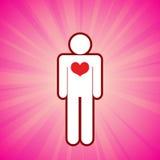 υγιής καρδιά Στοκ εικόνες με δικαίωμα ελεύθερης χρήσης