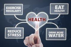 Υγιής καρδιά Στοκ εικόνα με δικαίωμα ελεύθερης χρήσης