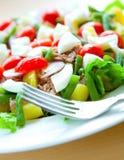 υγιής ο τόνος σαλάτας πιάτων Στοκ Εικόνες