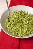 Υγιής πράσινη φυτική σαλάτα Στοκ Εικόνα