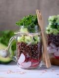 Υγιής σαλάτα με quinoa, το αβοκάντο, το αγγούρι και το ραδίκι με το φύλλο μαρουλιού και το ελαιόλαδο Στοκ Φωτογραφίες