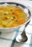 υγιής σούπα κοτόπουλο&upsilon Στοκ Φωτογραφίες