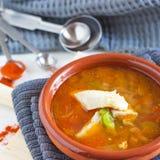 υγιής σούπα ψαριών στοκ εικόνες