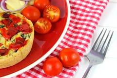 Υγιής στενός επάνω μεσημεριανού γεύματος Πίτα, τυρί, ντομάτες, κόκκινο κρεμμύδι Στοκ Εικόνες