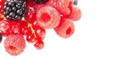 Υγιής φρέσκια ομάδα μούρων τροφίμων Μακρο πυροβολισμός των φρέσκων σμέουρων, των βατόμουρων και της κόκκινης σταφίδας που απομονώ Στοκ εικόνα με δικαίωμα ελεύθερης χρήσης